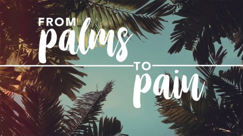 From Palms to Pain