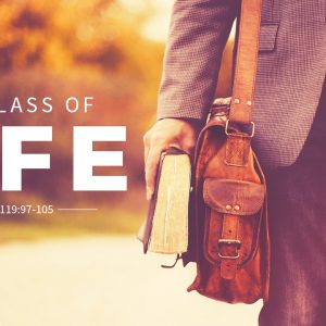 The Class of Life