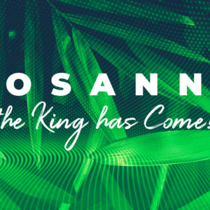 Hosanna, the King has Come!